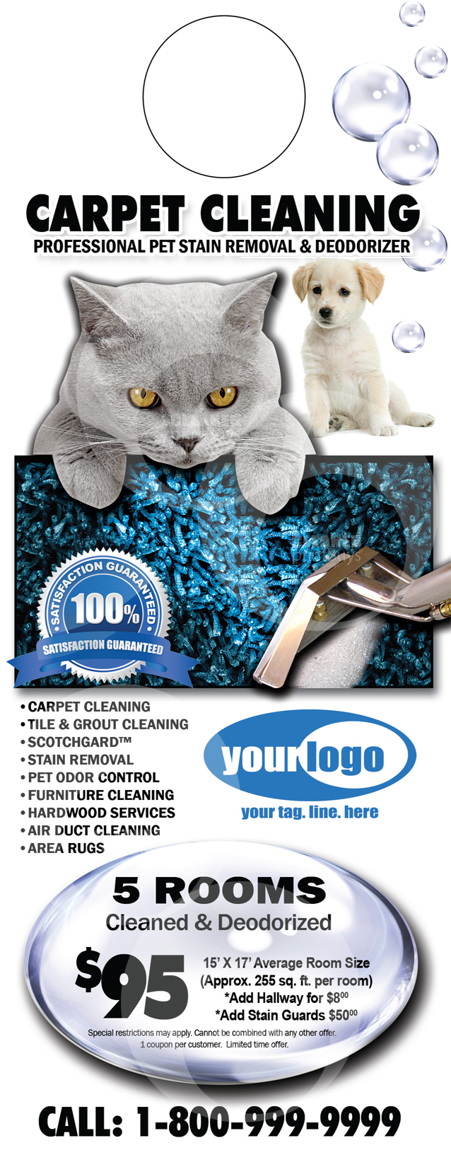 Direct Carpet Cleaning Images Room