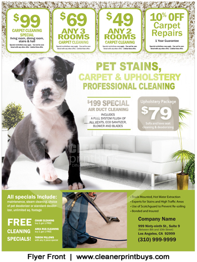 Carpet Cleaning Flyer (8.5 x 11) #C0003