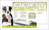 Carpet Cleaning Direct Mail c0003