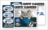 Carpet Cleaning Direct Mail c0007