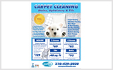 Carpet Cleaning Ads c0005