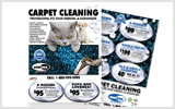 Carpet Cleaning Ads c0007