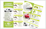 Carpet Cleaning Flyers C1005 8.5 x 11